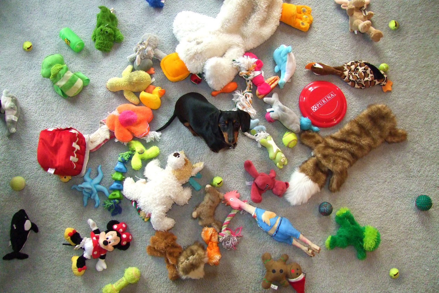 Lots Of Toys 44